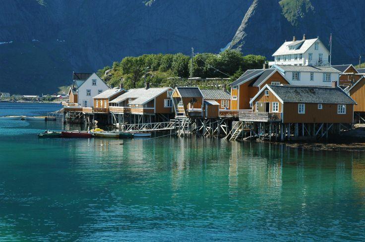 Norvege cotes
